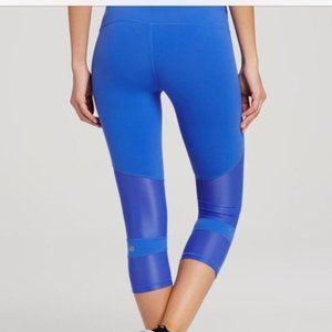 ALO Blue Mesh Leggings